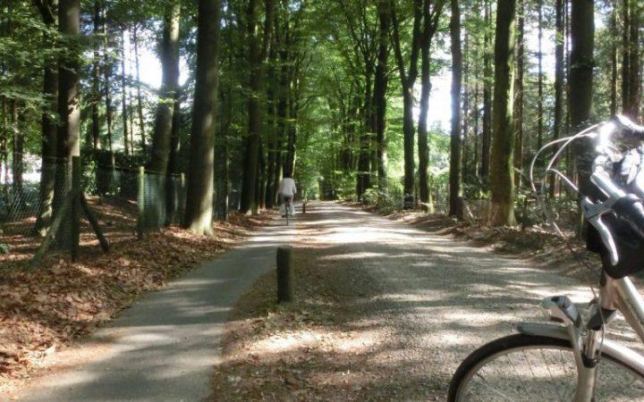 1-van-de-vele-fietspaden